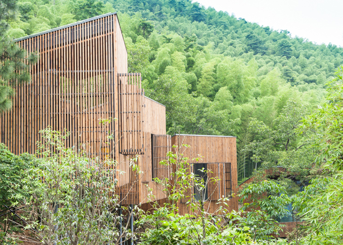 Garden Valley Treetop houses